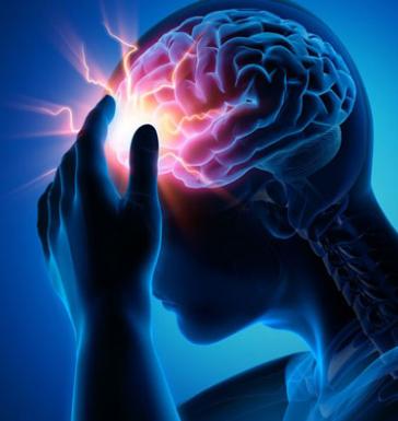 عملکرد نوار مغزی